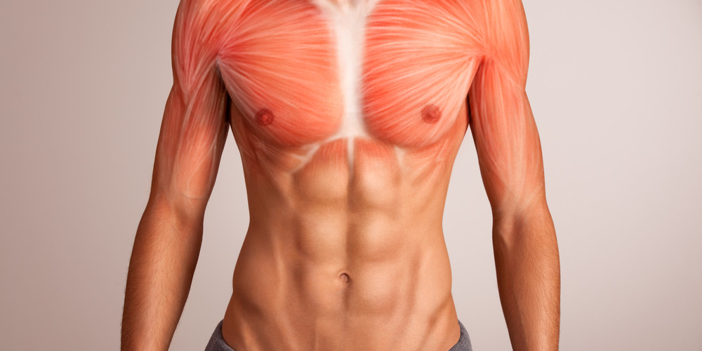 Pectoral Implants for Men